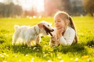 Hundeführerschein für KInder