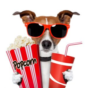 dog watching a movie with popcorn and coke